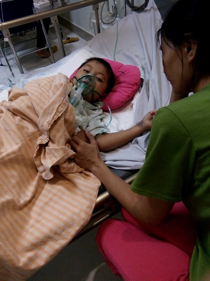Cậu bé 6 tuổi bị đàn ong rừng đốt ngất xỉu tại Đô Lương, Nghệ An