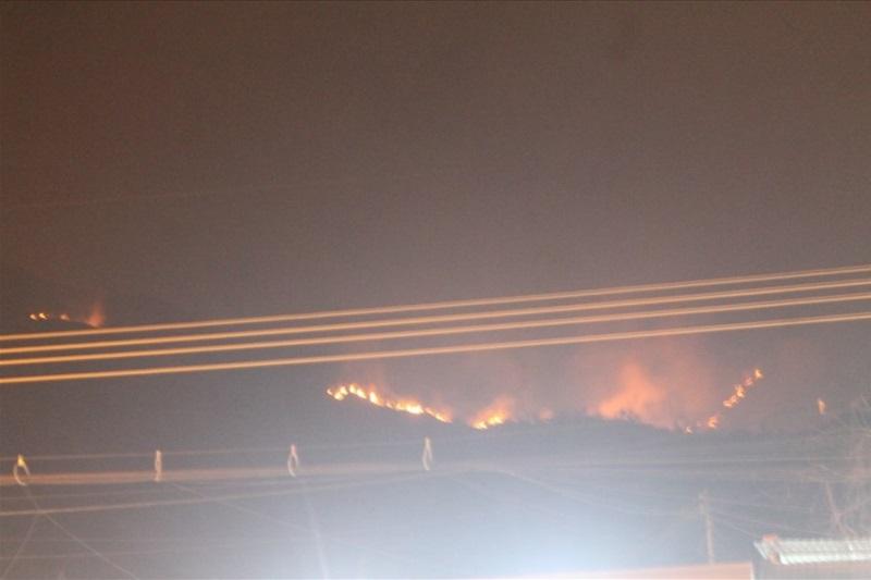 Cháy lớn trên núi, chủ tịch phường vừa ngồi quán cà phê vừa đuổi báo chí - Ảnh 1