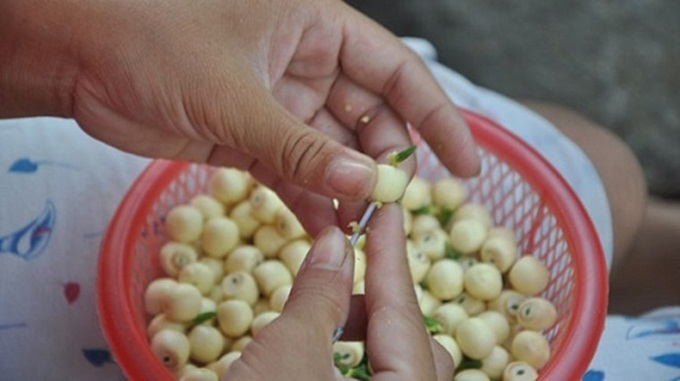 Chè hạt sen hầm – Thần dược quý như vàng giúp thánh gầy tăng bo bo 7kg sau 1 tuần, mỗi ngày 1 bát tốt gấp trăm lần nhân sâm, thuốc bổ - Ảnh 2