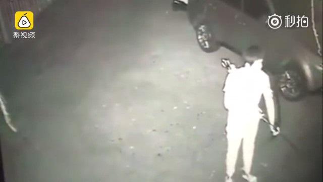 Clip sốc: Thanh niên dùng tên bắn chó cho vui rồi vứt xác vào thùng rác - Ảnh 1