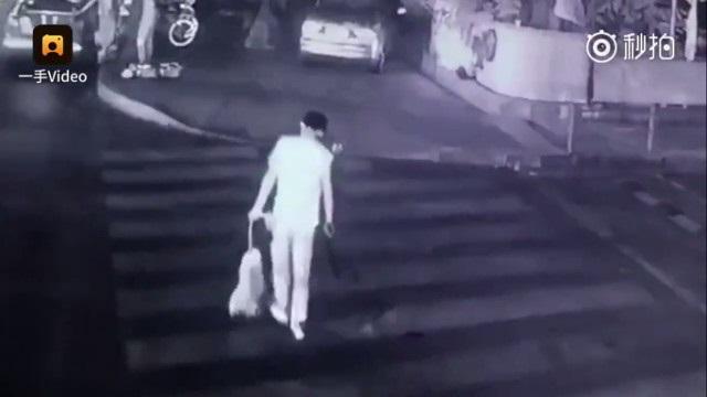Clip sốc: Thanh niên dùng tên bắn chó cho vui rồi vứt xác vào thùng rác - Ảnh 3