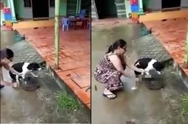 Clip sốc: Người phụ nữ thản nhiên chặt lìa chân chú chó đang còn sống - Ảnh 1
