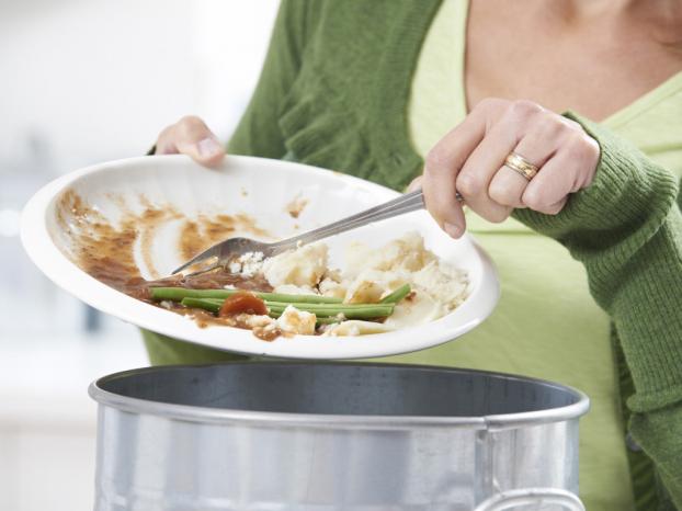 Cha mẹ nên làm gì khi trẻ biếng ăn? - Ảnh 2