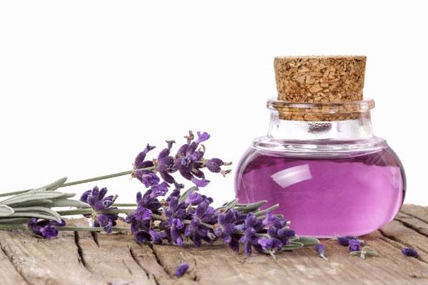 Tinh dầu oải hương giúp cải thiện vùng da cổ bị mụn nhanh chóng