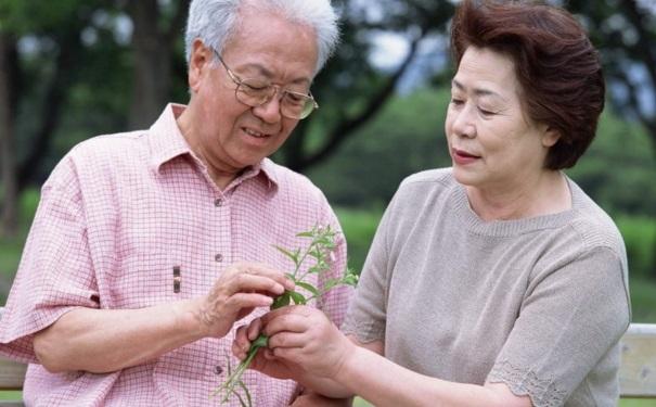 Người già sau khi ăn no có thể tập vài động tác nhẹ nhàng để thúc đẩy tiêu hóa, bài tiết