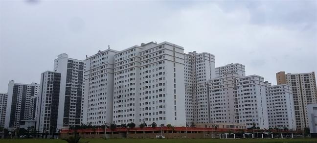 Người dân có thể tham gia đấu giá trực tiếp từng căn hộ tái định cư đang bị bỏ hoang ở Thủ Thiêm? - Ảnh 1