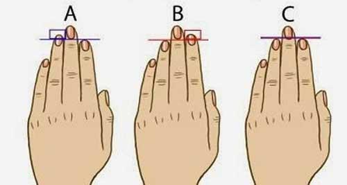 Người đàn ông có ngón tay đeo nhẫn dài hơn ngón trỏ có nồng độ testosterone cao hơn nên khả năng trong chuyện chăn gối cũng cao hơn