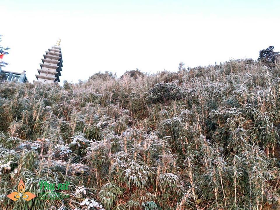 Đỉnh núi Fansipan lạnh âm 8 độ C, băng giá dày đặc như mùa đông châu Âu - Ảnh 7