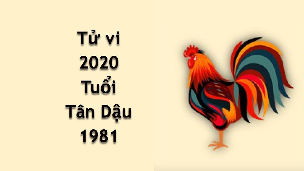 tu vi tuoi Tan Dau nam 2020 - 1