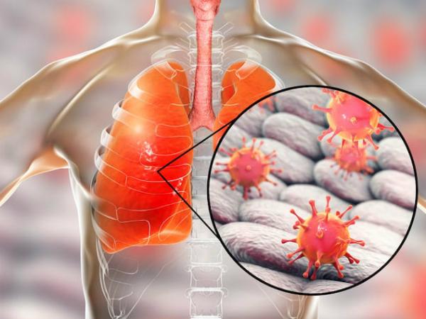 WHO đã xác định chủng vi rút gây viêm phổi cấp tại Trung Quốc - Ảnh 1