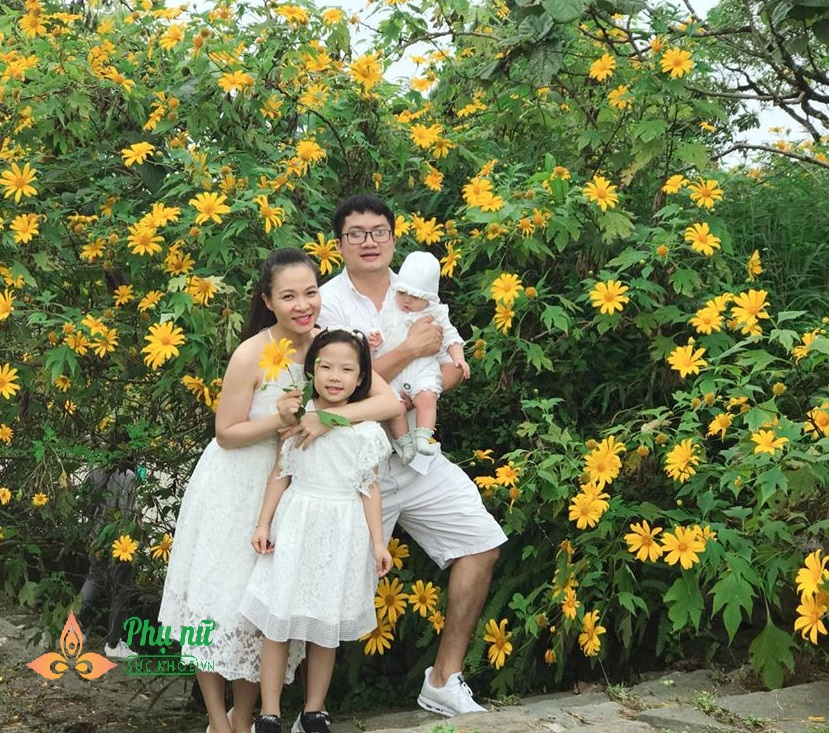 Hoa dã quỳ nở vàng rực sườn núi Ba Vì, giới trẻ nô nức lên 'sống ảo' khiến giao thông kẹt cứng - Ảnh 2