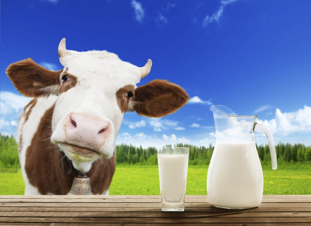 7 loại sữa bà bầu uống được trong thai kỳ để tốt cho mẹ và bé - Ảnh 3