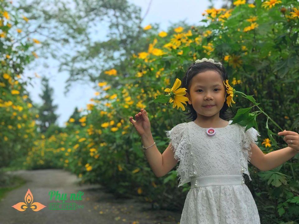 Hoa dã quỳ nở vàng rực sườn núi Ba Vì, giới trẻ nô nức lên 'sống ảo' khiến giao thông kẹt cứng - Ảnh 4