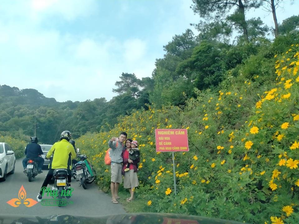 Hoa dã quỳ nở vàng rực sườn núi Ba Vì, giới trẻ nô nức lên 'sống ảo' khiến giao thông kẹt cứng - Ảnh 5