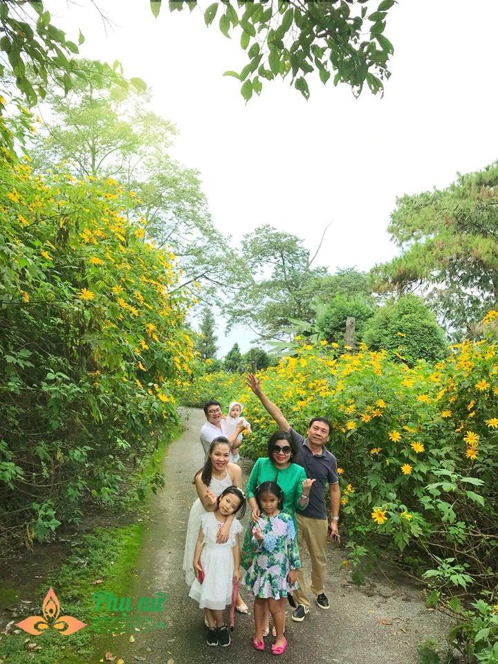 Hoa dã quỳ nở vàng rực sườn núi Ba Vì, giới trẻ nô nức lên 'sống ảo' khiến giao thông kẹt cứng - Ảnh 3