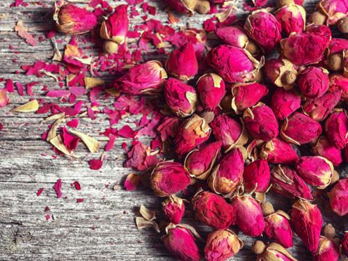 tac dung cua tra hoa hong 1