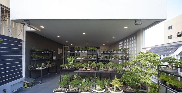 """Choáng ngợp ngôi nhà 300m2 với khu vườn bonsai toàn cây """"khủng"""" - Ảnh 9"""