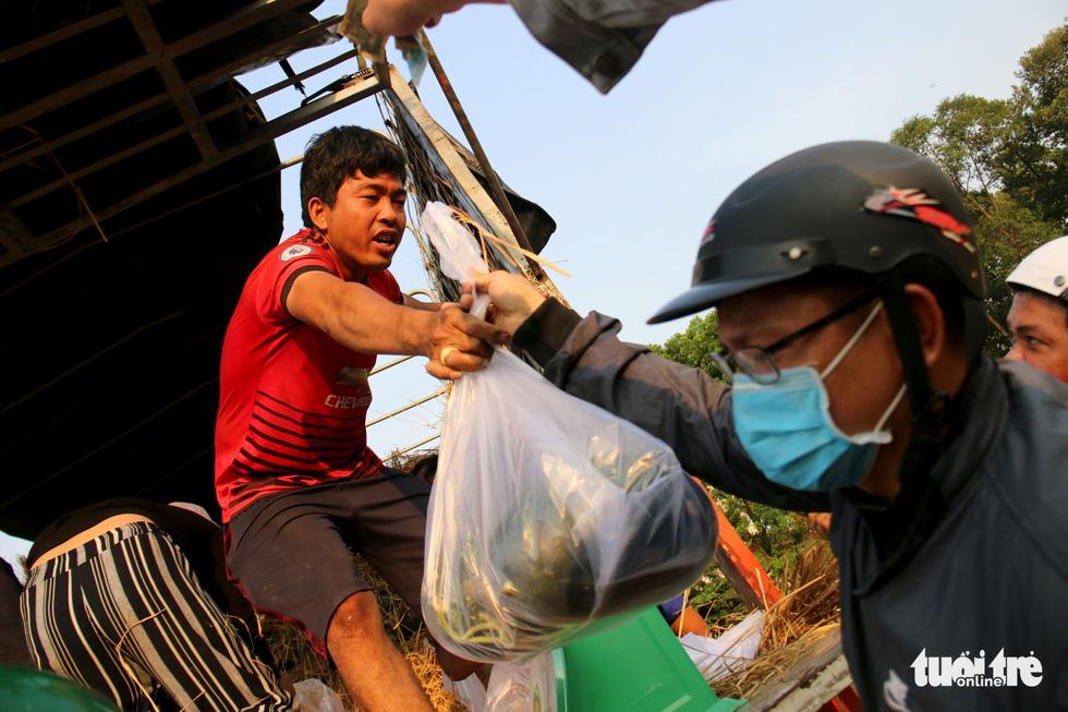 Người Sài Gòn xếp hàng 'giải cứu' dưa hấu, có người mua cả tấn làm từ thiện - Ảnh 5