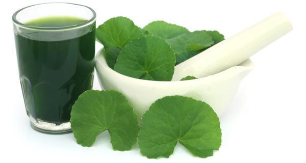 10 công dụng của rau má đối với sức khỏe có thể bạn chưa biết - Ảnh 4