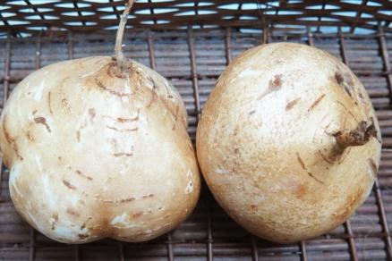 Một số loại rau quả làm giảm béo - Ảnh 3