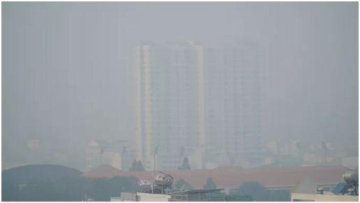 Bác sĩ cảnh báo những nguy cơ sức khỏe đối với bà bầu và thai nhi khi không khí bị ô nhiễm - Ảnh 1