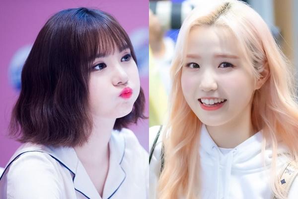 Những Idol Hàn 'má bánh bao' không cần Vline vẫn khiến fan đổ rạp - Ảnh 1