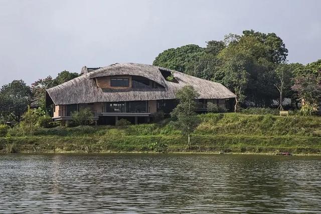 Ngôi nhà mái rạ của đại gia Hà Nội gây 'sốt' trên báo Mỹ vì thiết kế độc lạ - Ảnh 1