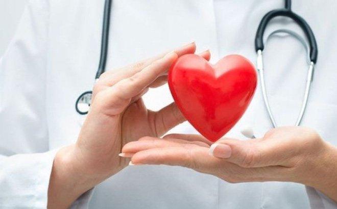 Một trong những lợi ích tuyệt vời của dưa hấu là tốt cho sức khỏe hệ tim mạch