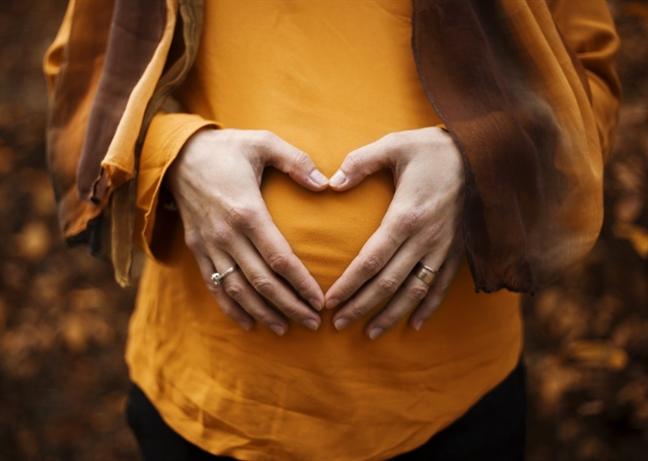 Cho lao động nữ đang mang thai thôi việc vi phạm gì? - Ảnh 1