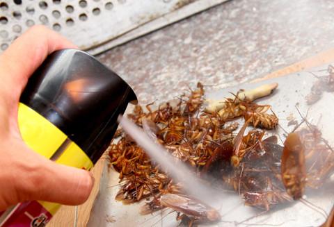 Những mùi hương độc hại cha mẹ không nên cho trẻ ngửi kẻo làm hại con - Ảnh 2