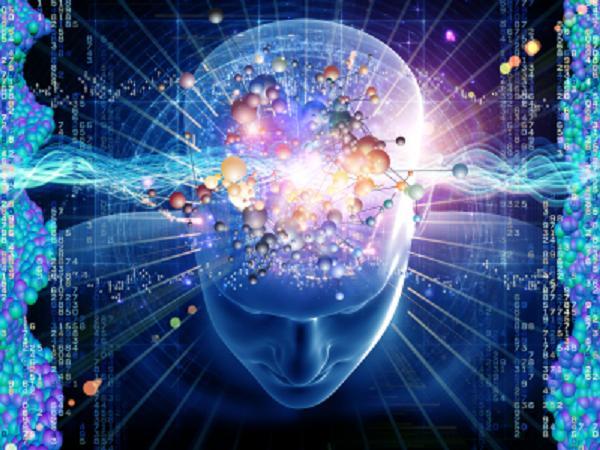 Giác quan thứ 6 chính là điều kì diệu của bộ não cũng như cơ thể mà bản thân con người chưa thể khám phá và sử dụng hết