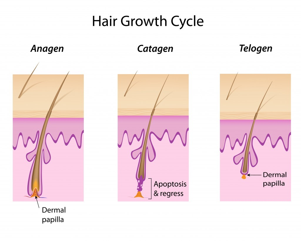 Viêm lỗ chân lông vùng kín cần phải làm gì? ảnh 1