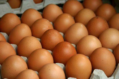 Trứng gà biến đổi gene điều trị ung thư - Ảnh 1