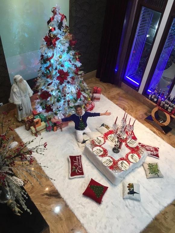 Người dân chen chúc tới biệt thự triệu đô của Đàm Vĩnh Hưng để chụp ảnh Giáng sinh - Ảnh 1