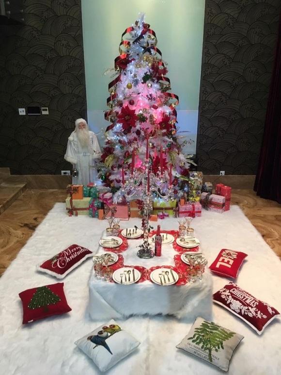Người dân chen chúc tới biệt thự triệu đô của Đàm Vĩnh Hưng để chụp ảnh Giáng sinh - Ảnh 4