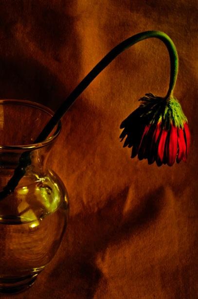 Cảnh báo: Vợ chồng bất hòa, hôn nhân xuất hiện kẻ thứ ba chỉ vì đặt bình hoa sai cách - Ảnh 2