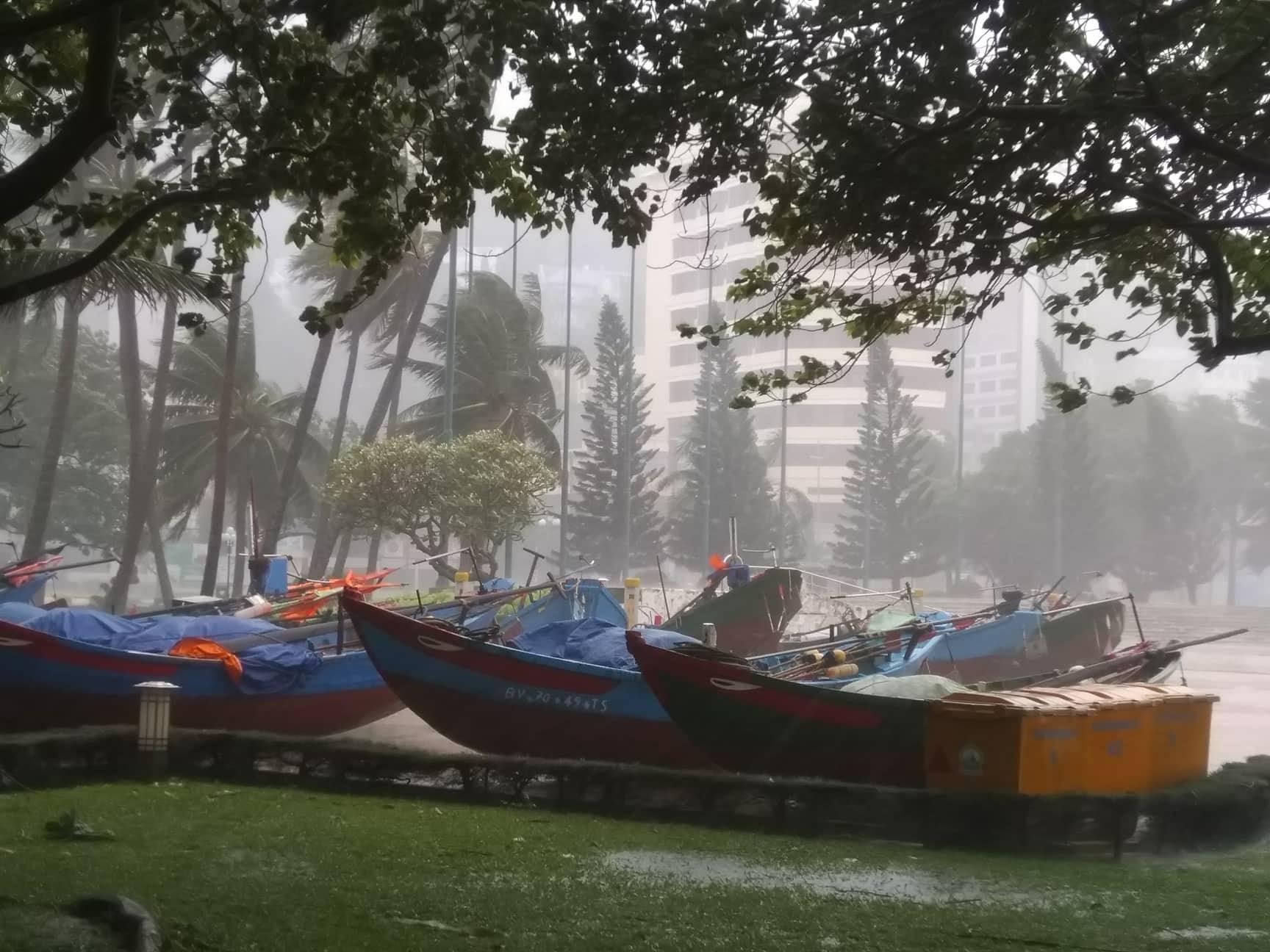 Bão Usagi đổ bộ, người Vũng Tàu tìm nơi trú tránh, dân Sài Gòn thảnh thơi - Ảnh 8
