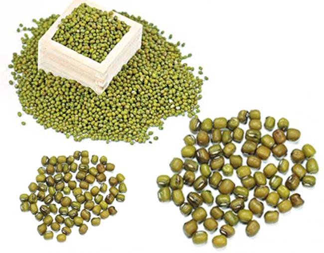 Ngỡ ngàng với hàng tá công dụng làm đẹp từ dưỡng da đến giảm cân của bột đậu xanh - Ảnh 1