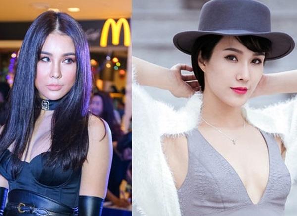 Những sao Việt 'dọa' khán giả vì gương mặt khác lạ khi phẫu thuật thẩm mỹ hỏng - Ảnh 13