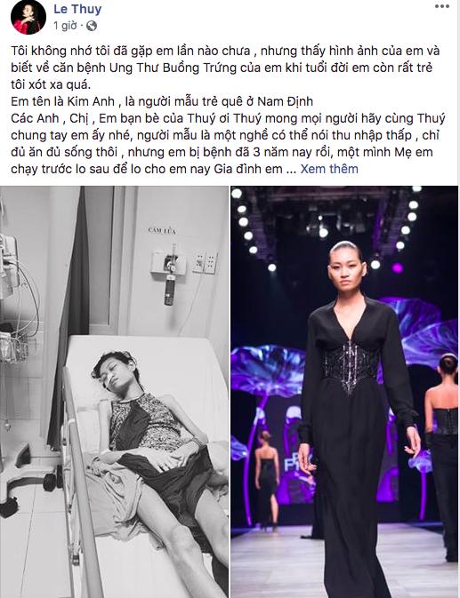 H'Hen Niê và các mỹ nhân Việt kêu gọi giúp đỡ  người mẫu trẻ bị ung thư - Ảnh 3