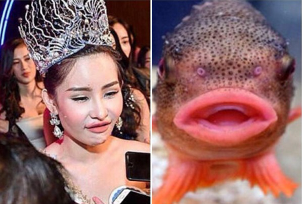 Vụ lùm xùm Hoa hậu Đại dương 2017: Duy Mạnh thẳng mặt chỉ đích danh kẻ trục lợi khi làm tổn thương Lê Âu Ngân Anh - Ảnh 1