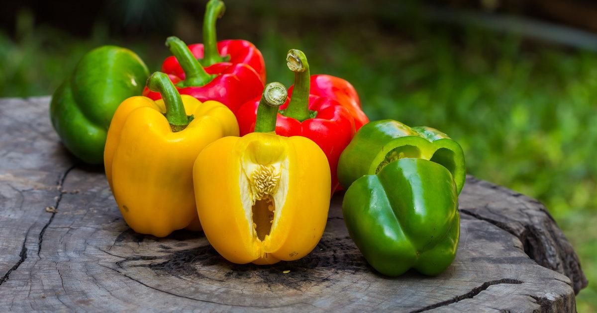 Ớt chuông giàu vitamin C, một thành phần thiết yếu trong việc sản xuất collagen của cơ thể. Bổ sung ớt chuông vào thực đơn hàng ngày giúp da duy trì độ đàn hồi và chống lại các dấu hiệu lão hóa.