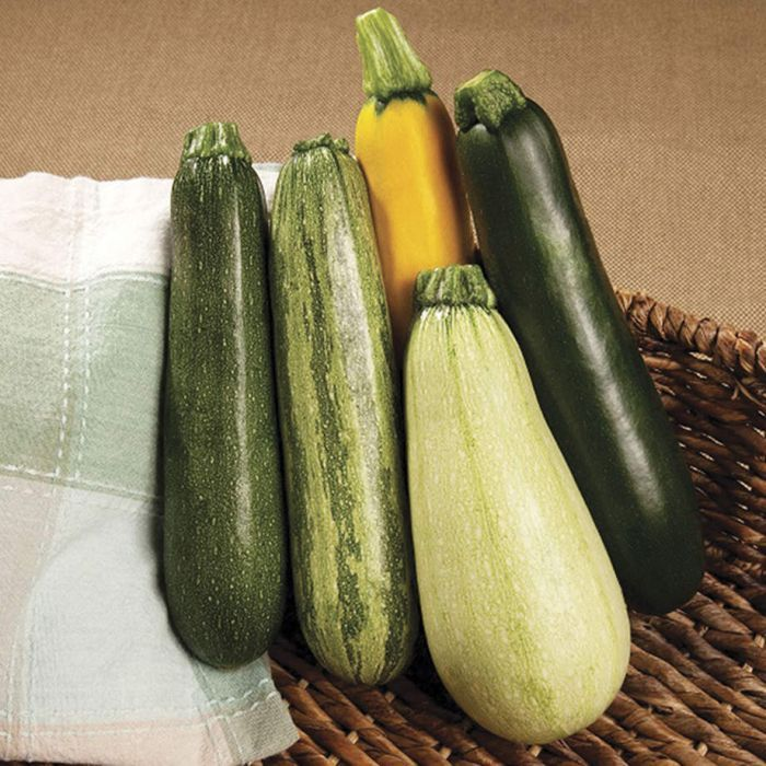 Các loại bí đều là nguồn cung cấp beta carotene, vitamin A, C dồi dào, giúp chống lão hóa da hữu hiệu.