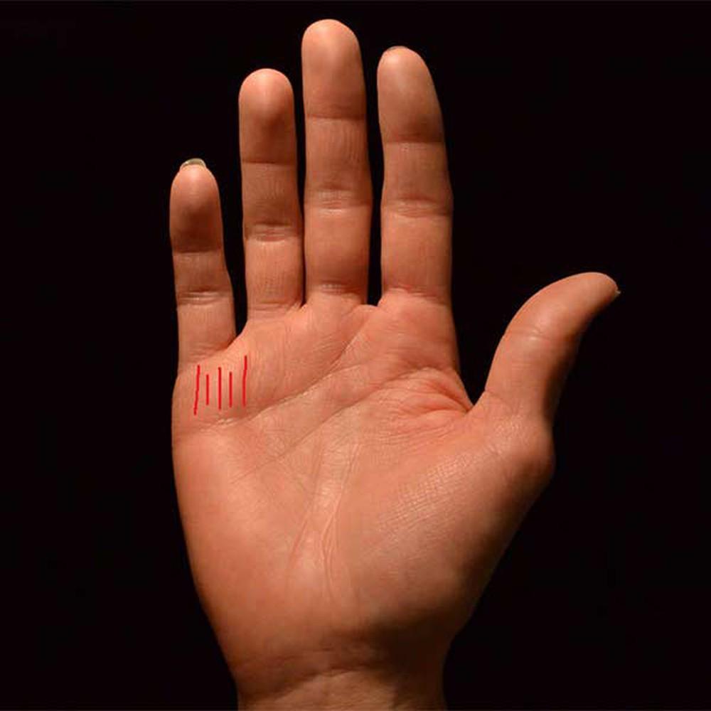 Nếu bàn tay phụ nữ mà có nhiều vân tài vận thì chứng tỏ bạn có nguồn tài vận rất dồi dào