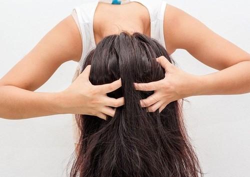 Lười gội đầu là nguyên nhân khiến bạn gặp phải các vấn đề về mụn nhọt, mụn bọc mọc tràn lan trên da đầu