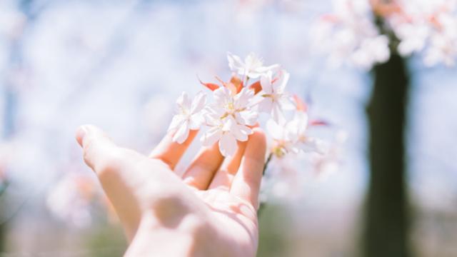 9 điều cần 'buông' để cuộc sống hạnh phúc, an nhiên - Ảnh 3