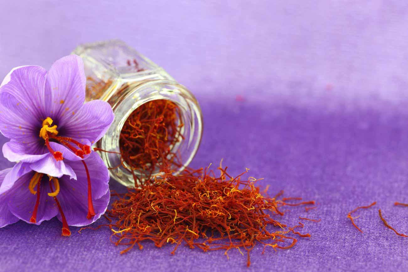 Nhụy hoa nghệ tây tốt cho sức khỏe và giúp làm đẹp hoàn hảo