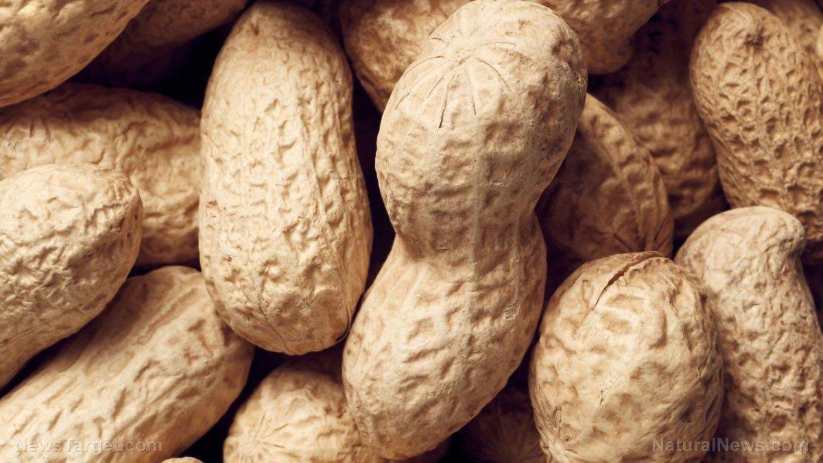Bạn hãy ăn vặt bằng đậu phộng - Ảnh 1
