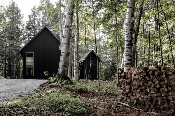 Gợi ý tuyệt vời cho đại gia thích làm nhà trong rừng - Ảnh 1