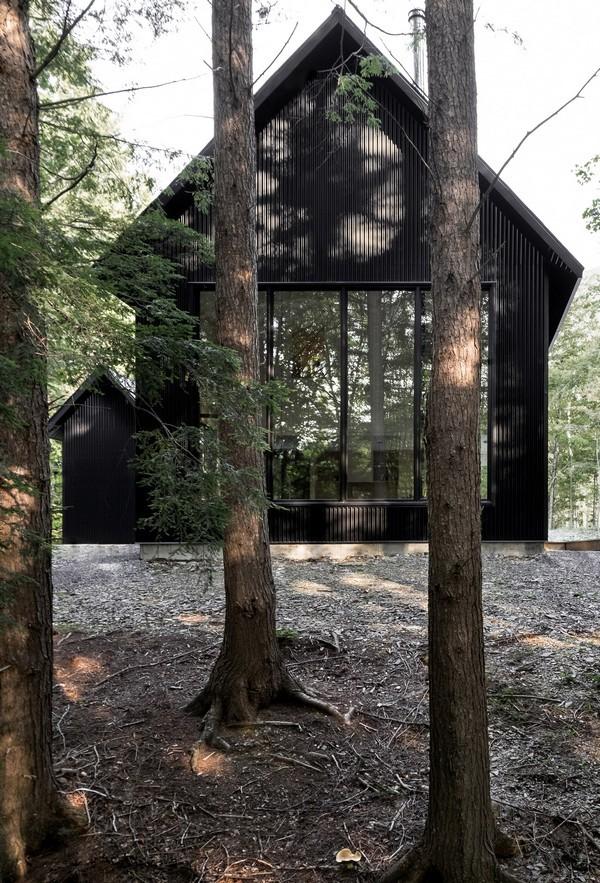 Gợi ý tuyệt vời cho đại gia thích làm nhà trong rừng - Ảnh 2